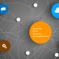 socialmedia-institute-enterprise-social-networks-herausgeberband